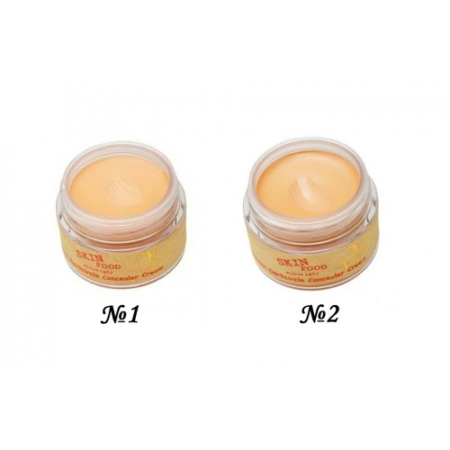 SKINFOOD Salmon Dark Circle <br />Concealer Cream